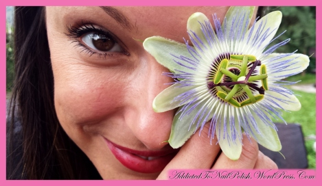 2014-09-21_PassionFlower